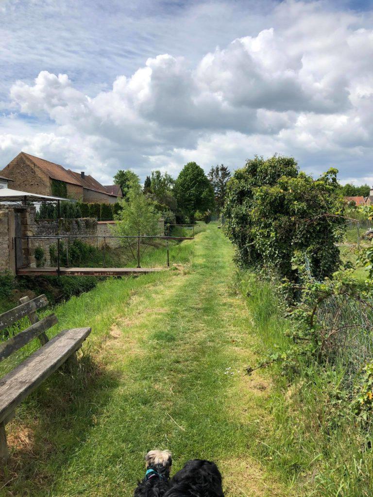 Ortsgemeinde Wendelsheim